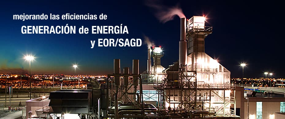 Since 1992 a dedicated team of IST professionals, OTSG (Once Through Steam Generators)